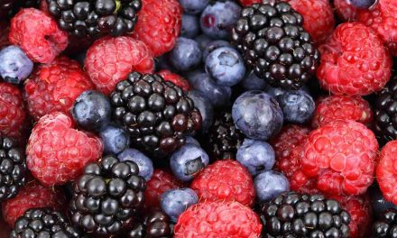 Protect Your Brain With Berries