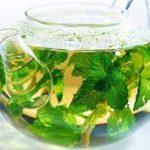 Green Tea and Memory