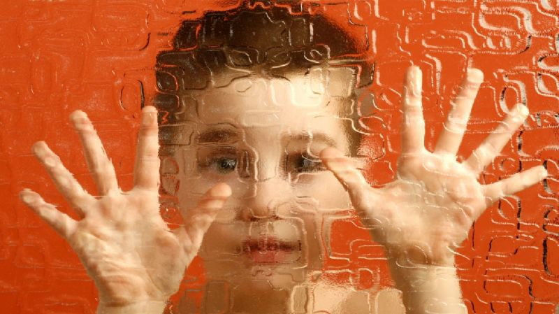 Autoimmunity and Autism