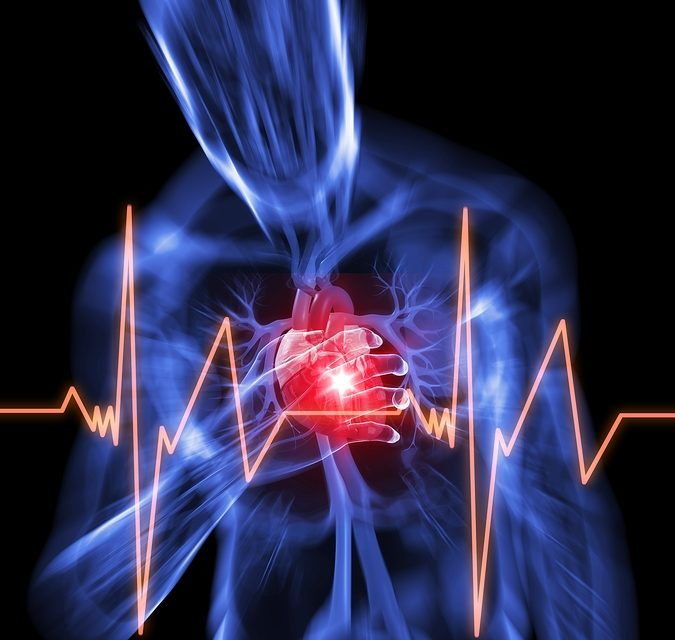 Magnesium and Sudden Cardiac Death
