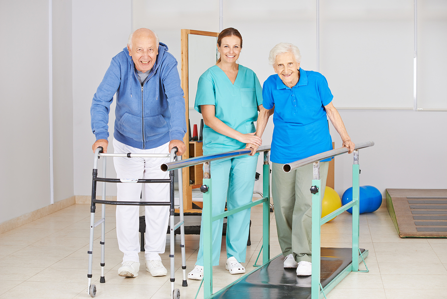 Nutrient Intake and Frailty in the Elderly
