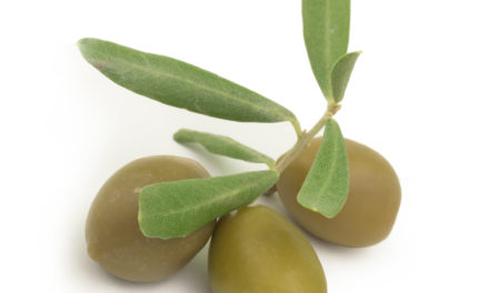Olive Leaf Extract and Blood Pressure
