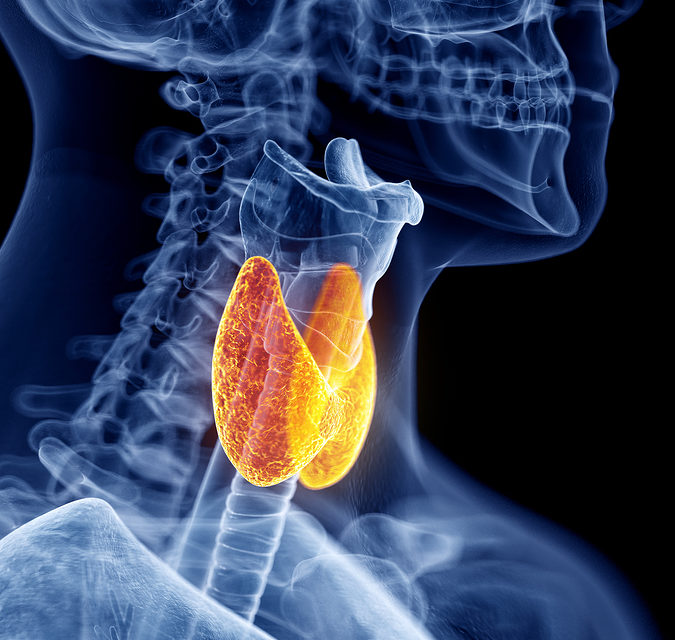 Are There 13 Million with Undiagnosed Thyroid Problem?