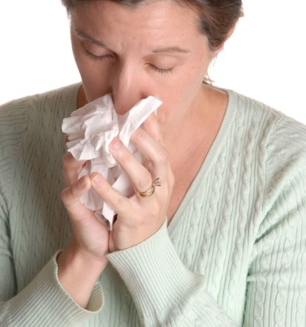 Echinacea for the Common Cold?
