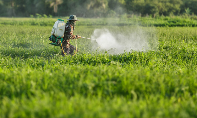 Exposure to Pesticides Damages the Brain and Nervous System