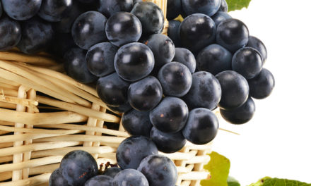 Resveratrol Protects from Colon Cancer