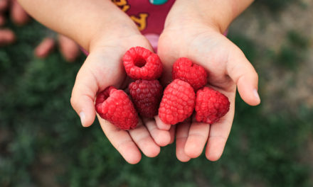Raspberries and Esophageal Cancer