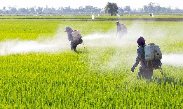 Pesticides and Diabetes