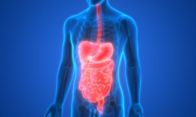 Special Report for People with High Scores for Digestion in the Health Questionnaire