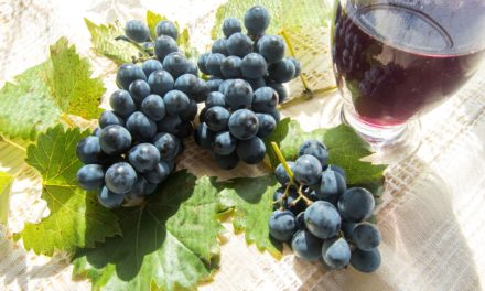 Resveratrol and Arterial Health in Diabetics