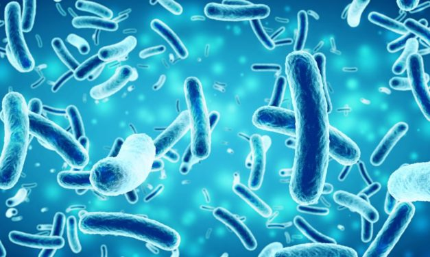 The Link Between Salmonella and Autoimmune Arthritis